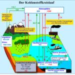 CO2-kreislauf